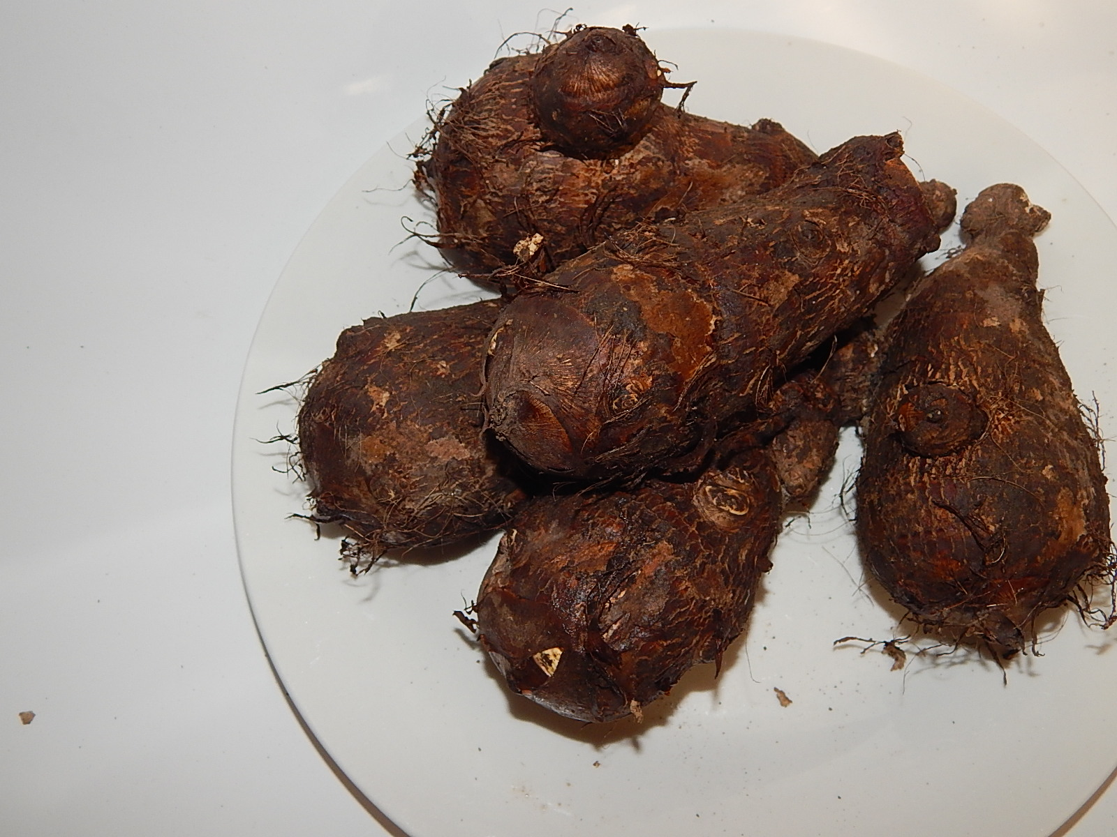 Large cocoyam which are yam like unlike the one used as a soup thickner